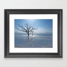 Natural Beach Framed Art Print