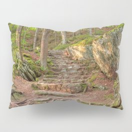 Green Mountain Forest Trail Pillow Sham