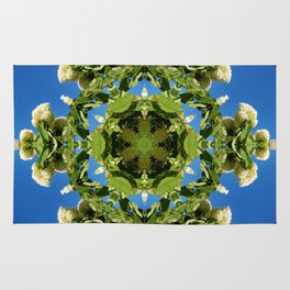 Hydrangea kaleidoscope - white flowers, green leaves, blue sky 161134 k6 Rug