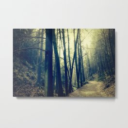 in the forest dark and shaded Metal Print