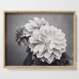 Black and White Dahlia Flower Photography, Grey Floral, Gray Neutral Nature Petals Serving Tray