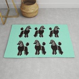 Black Standard Poodles with Mint Rug