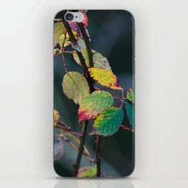 Autumn Aquarelle on the Canvas of Winter iPhone Skin