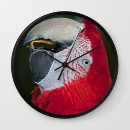 Red and Green Macaw Wall Clock