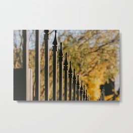 iron fence, yellow leaves Metal Print