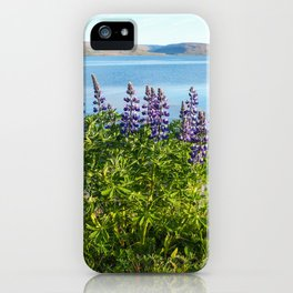 Lupins by the Fjord 1 iPhone Case