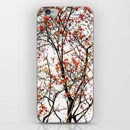 Red rowan fruits or ash berries iPhone Skin