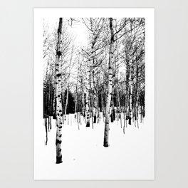 WhiteTrees Art Print