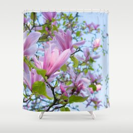 Magnolia trees in bloom  Shower Curtain