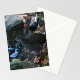 Water bird Stationery Cards