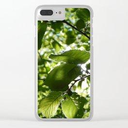 Sunlight Canopy Clear iPhone Case