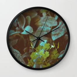 look into nature for signs. Wall Clock