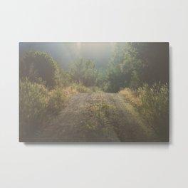 Backroad Wandering Metal Print