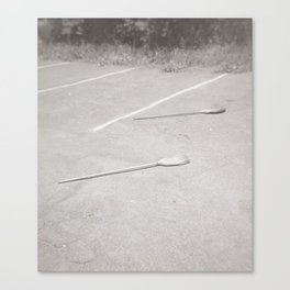 Two Brooms Canvas Print
