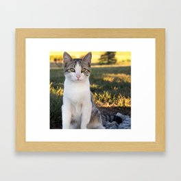 Kountry Kitty II Framed Art Print