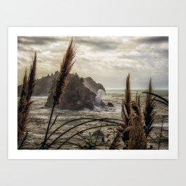 Blown Blow Hole in Trinidad California Ocean photograph Art Print