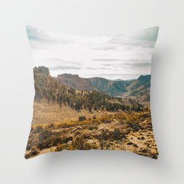Patagonian Estepa Throw Pillow