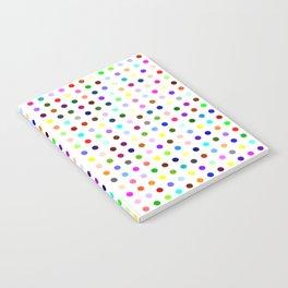 Propoxyphene Notebook