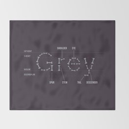 Grey's Anatomy Throw Blanket