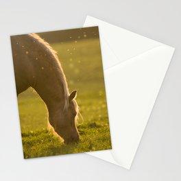 Golden light in horse's mane Stationery Cards