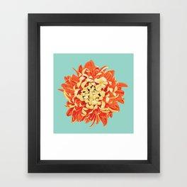 Chrysanthemum (Part of a Triptych) Framed Art Print