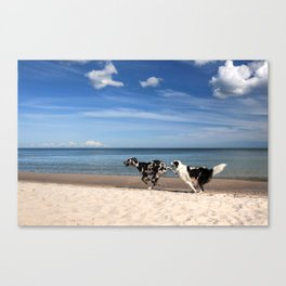 Playing dogs at the beach Canvas Print