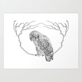 Owl In Tree (Print) Art Print