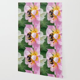 bee on pink flower Wallpaper