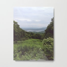 The View From Metal Print
