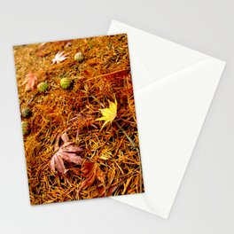 Colorful Japanese Maple Leaves and Acorns on the Ground In Fall Photography Stationery Cards