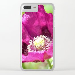 Purple Poppy by Reay of Light Photography Clear iPhone Case