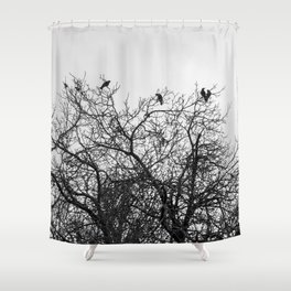 A murder of crows sitting in a tree Shower Curtain