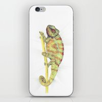 chameleon iPhone & iPod Skins featuring chameleon by merry