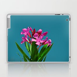 Pretty in pink under turquoise sky Laptop & iPad Skin