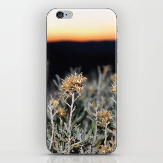 Sagebrush iPhone Skin