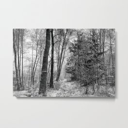 Winteress Metal Print