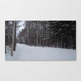 Snowy Path 2 Canvas Print