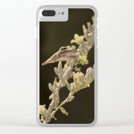 Closeup of Hummingbird Hovering Over Hesperaloe Parviflora Flower Clear iPhone Case