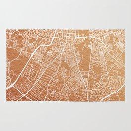 Rose gold Belfast map Rug