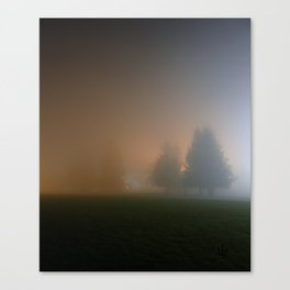 Only night Canvas Print