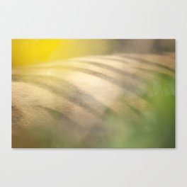 Tigress Canvas Print