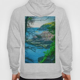 Acadia National Park Forest Coast View Hoody