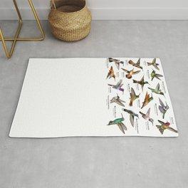 Hummingbirds of the United States Rug