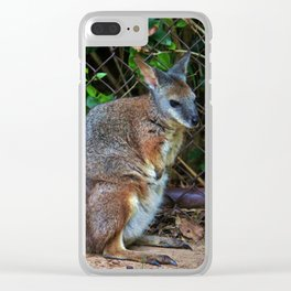 Red Necked Wallaby Clear iPhone Case