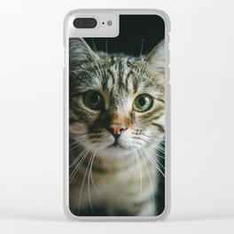 Portrait of a Cat Clear iPhone Case