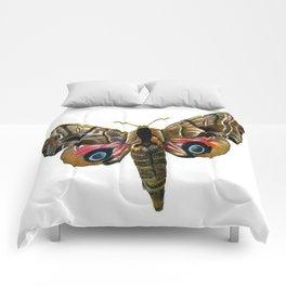 Moth Comforters