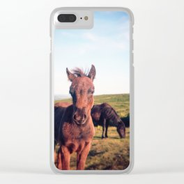 Dartmoor Pony Portrait (2) Clear iPhone Case