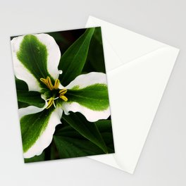 Green-striped White Trillium  (Disease can be beautiful) Stationery Cards