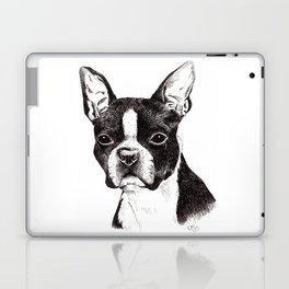 Boston Terrier Portrait Laptop & iPad Skin