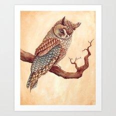 The Long Eared Owl Art Print